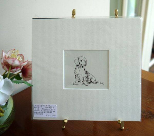 Smooth Haired Dachs - Dax O4 -  sitting  1960's print by Bridget Olerenshaw